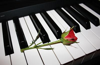 gul-piyano